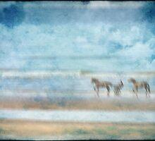 ride on the beach by Sonia de Macedo-Stewart