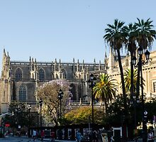 Seville - The Cathedral  by Andrea Mazzocchetti