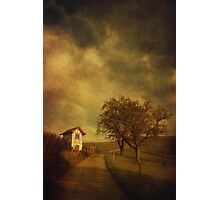 Little vineyard house Photographic Print