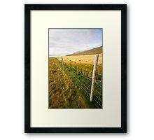 Green wheat field Framed Print