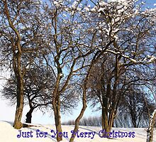 Just for You Merry Christmas by Paul Bettison