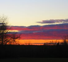 November 1, 2010 Sunset in Connecticut by Debbie Robbins