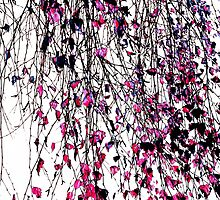 pink willow by Ingz