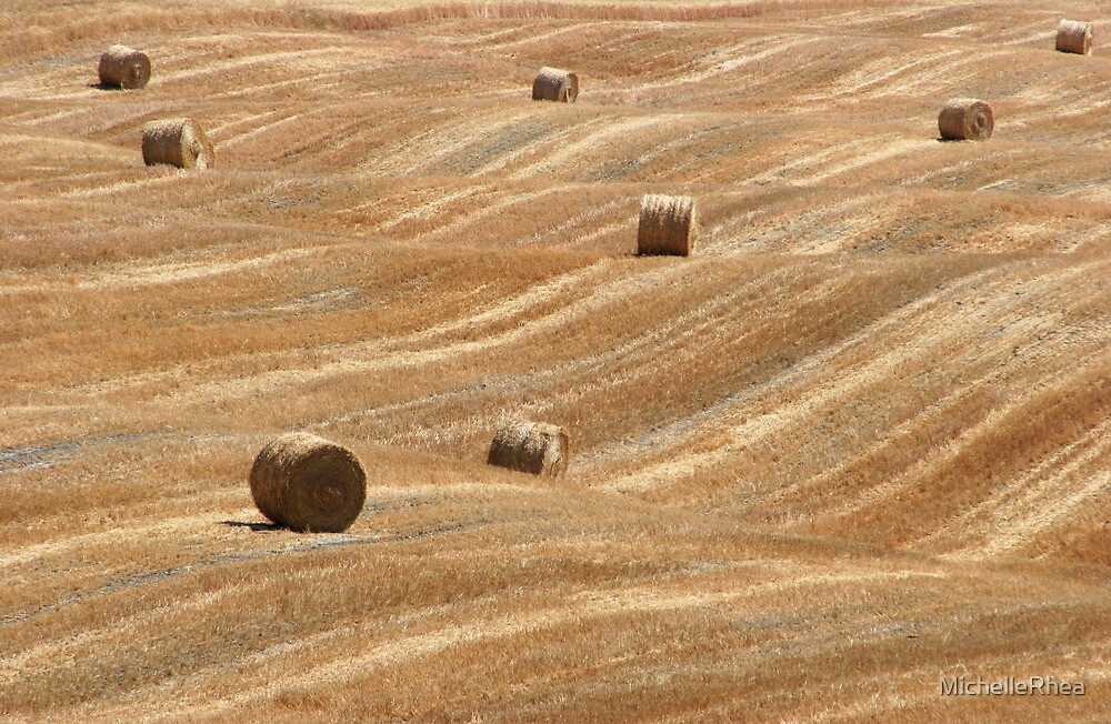 Hay Bales in Tuscany by MichelleRhea