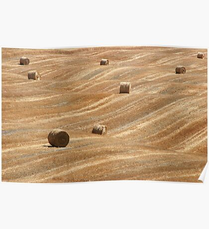 Hay Bales in Tuscany Poster