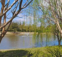 Weeping Willow Pond by Darla Brock