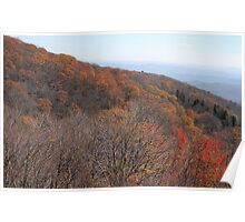 Autumn along the Blue Ridge Parkway Poster