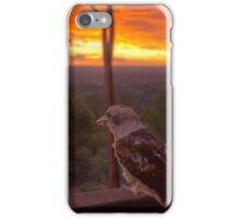 Admiring the View iPhone Case/Skin