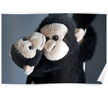 Monkey hugs are the best Poster