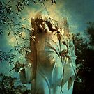 Cemetery Angel by Susanne Van Hulst