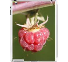 Flavour Burst iPad Case/Skin