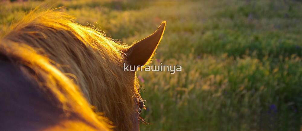 Living sunlight by kurrawinya