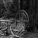 Forest Furniture by JimJohnson