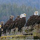 Nine by EagleHunter
