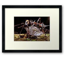 """""""Anto-botz.......2645""""    (The cloned Micro-Droids.) Framed Print"""