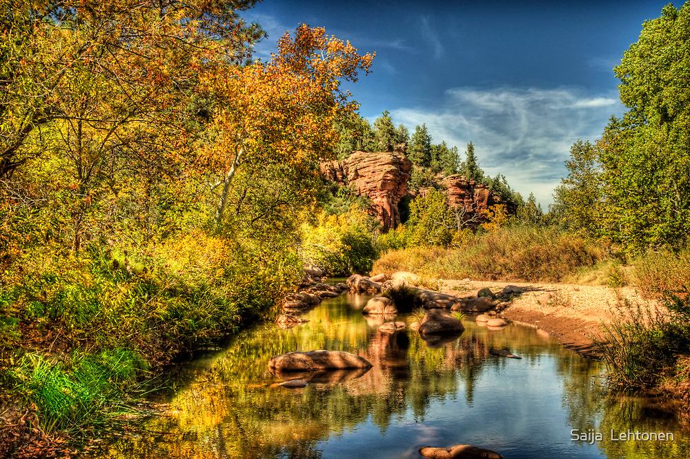 Fall is in the Air... by Saija  Lehtonen