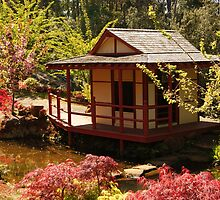 Japanese Tea House by michellerena