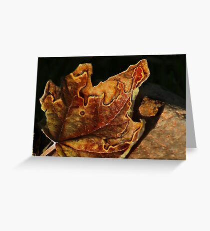 Autumn's Abstraction Greeting Card