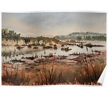 Wetlands at Windermere Poster