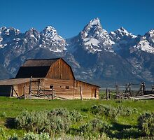 Mormon Row, Grand Teton National Park by Ryan Wright