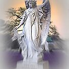 Guardian Angel - Williamstown Cemetery by EdsMum