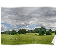 Sheep Grazing the Meadow Poster