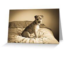 Mac the Dog Greeting Card