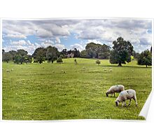 Peaceful Pastures Poster