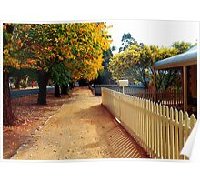 Trees in Autumn >> Poster