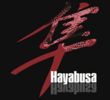 Hayabusa by Paul Shellard