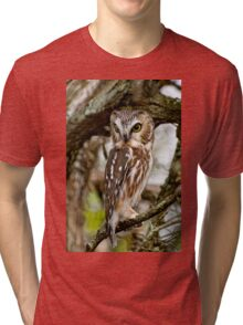 Northern Saw Whet Owl - Amherst  Island, Ontario Tri-blend T-Shirt