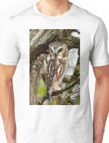 Northern Saw Whet Owl - Amherst  Island, Ontario T-Shirt