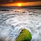 Anglesea green by Neil