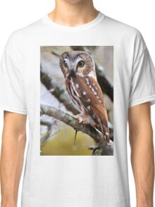 Northern Saw Whet Owl - Amherst Island, Ontario Classic T-Shirt