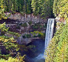 Brandywine Falls by Liz Percival