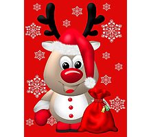 Red Nose Reindeer  Photographic Print