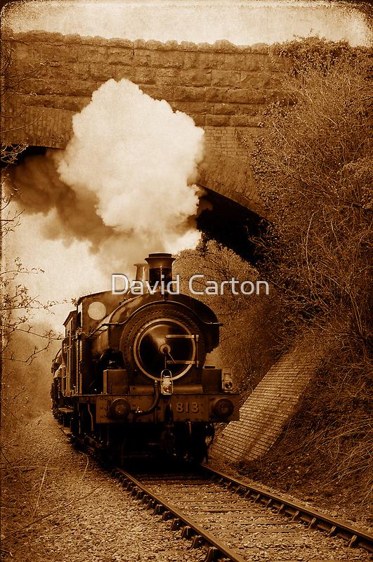 Steam train going under bridge, Shepton Mallet, Somerset, UK by buttonpresser