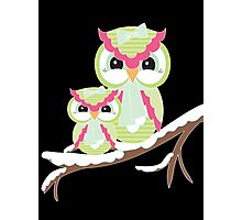 Two Owls for Christmas  Photographic Print
