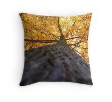 Autumn Below Throw Pillow