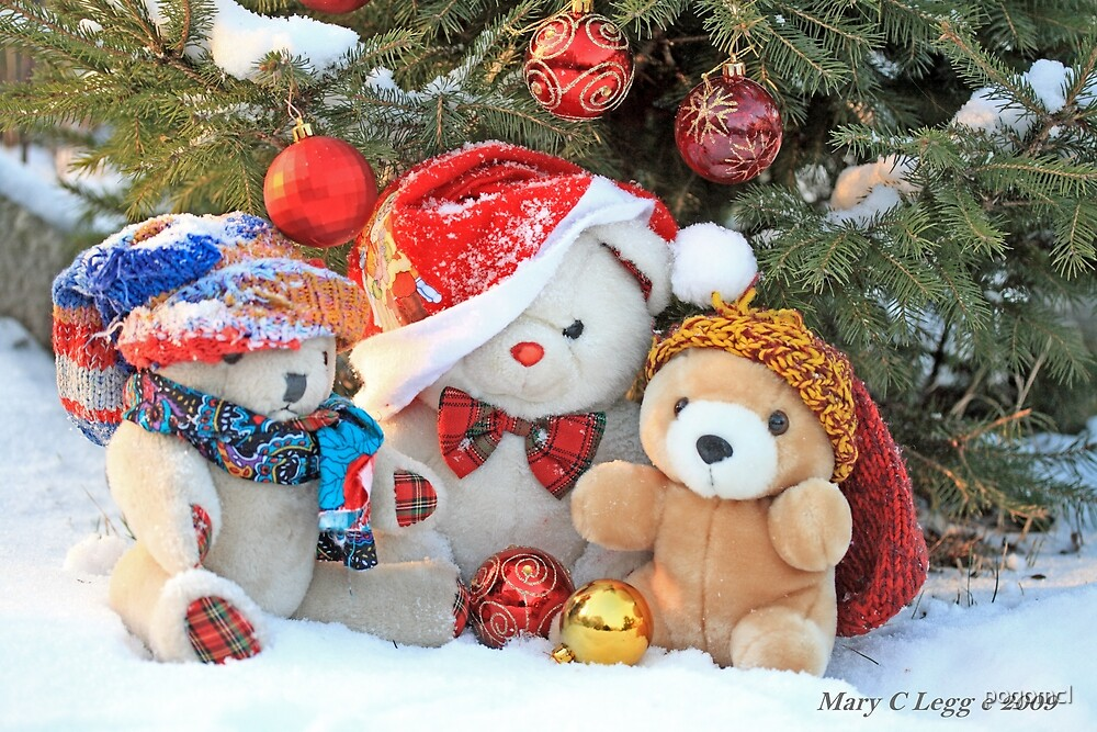 Three teddy bear friends  under the outdoor Christmas Tree by pogomcl