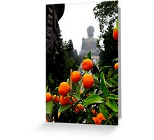 Fruit from Buddha Greeting Card