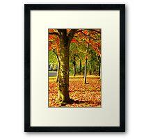 Golden Autumn Trees Framed Print