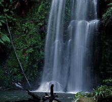 Beauchamp Falls - The Otways, Victoria - Australia by peterperfect
