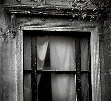 Secrets by Christine  Wilson Photography
