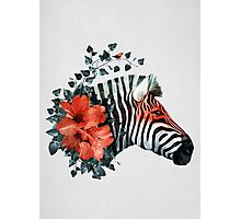 Untamed Photographic Print