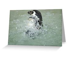 Penguin... Greeting Card