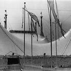 Saltimbanco, Cirque du Soleil by Jessica  Schoepen