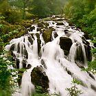 Swallow Falls North Wales by Julian Easten