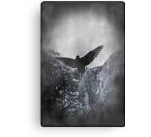 Flying The Black Flag of Himself Canvas Print