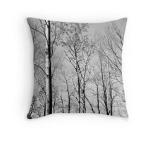 The Forest Lou Campbell State Nature Preserve Throw Pillow